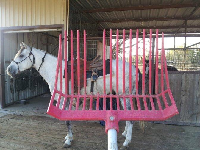 horse-muck-rake